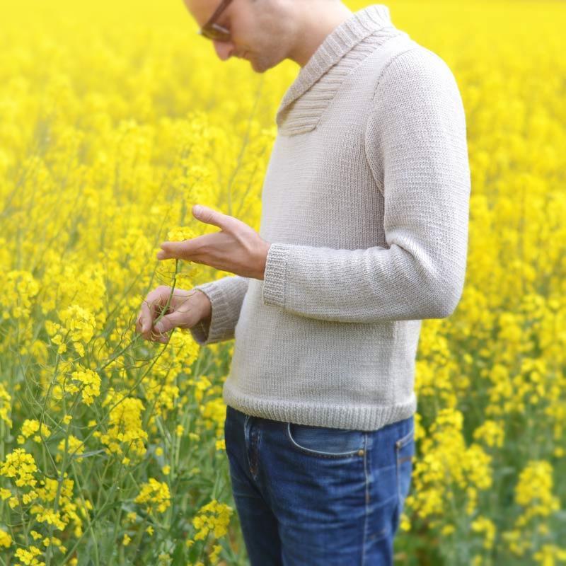 Modèle à tricoter Pull col châle